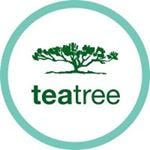 image of the @TeaTreeHairCare Instagram handle